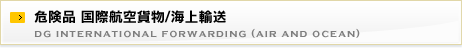 危険品 国際航空貨物/海上輸送 dg international forwarding (air and ocean)