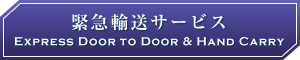 緊急輸送サービス Express Door to Door & Hand Carry